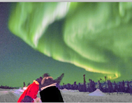 Nature tours of Yukon's Northern Lights viewing